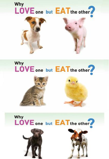 why-love-one-but-eat-the-other