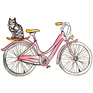cat on pink bicycle