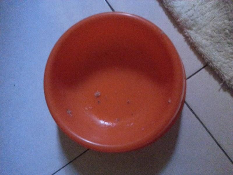 mini-PD-Bowl