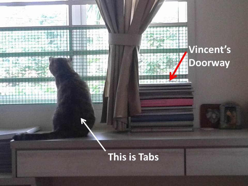 tabs' lookout