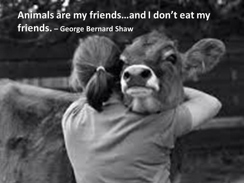 animals are my friends and I don't eat my friends