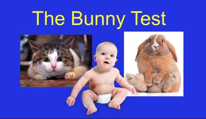 bunny test human