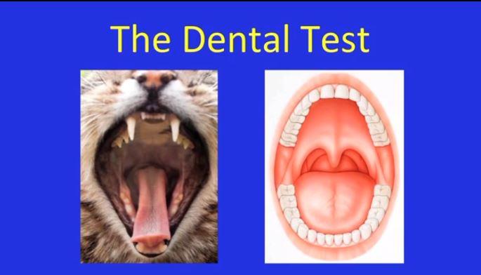 dental test