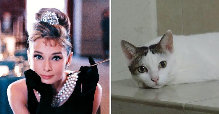 Pole and Audrey Hepburn